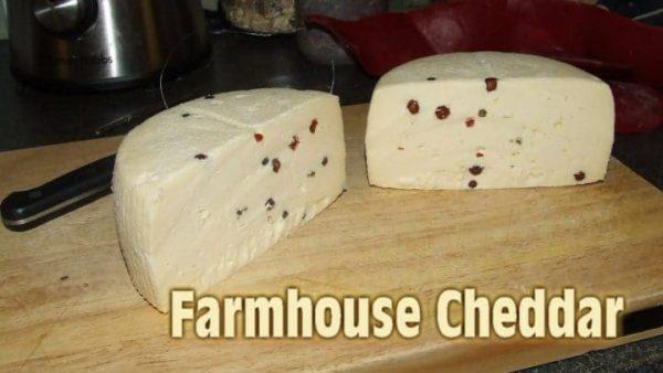 Farmhouse cheddar