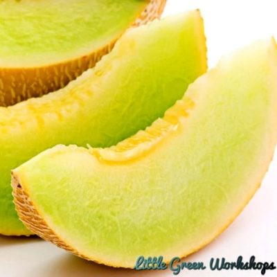 Honeydew Melon Fragrance Oil