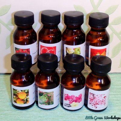 Mega Soy Tealight and Melt Kit Fragrances