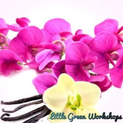 Sweet Pea and Vanilla Fragrance Oil