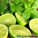 Wild Mint and Lime Fragrance Oil