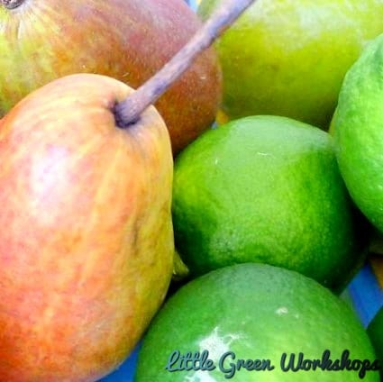 Pear and Lime Fragrance Oil