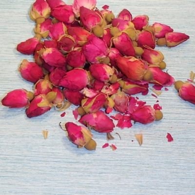 Red Rose Buds close