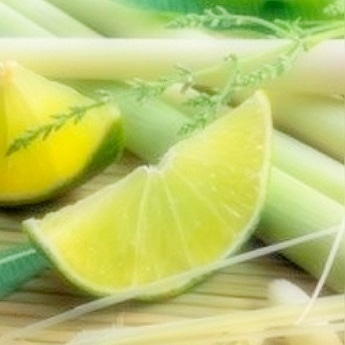Lemongrass & Persian Lime Fragrance Oil