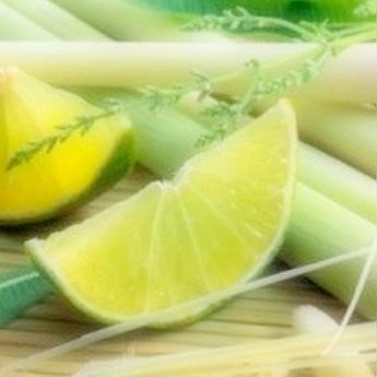 Lemongrass & Persian Lime Fragrance Oil