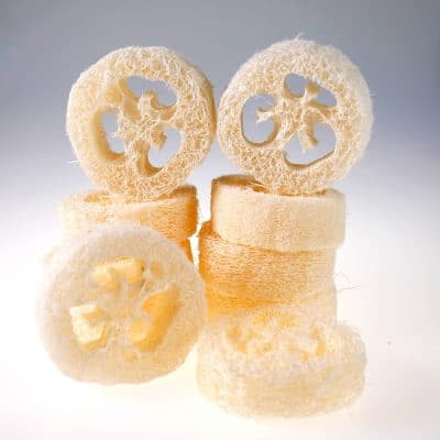 Loofah Slices