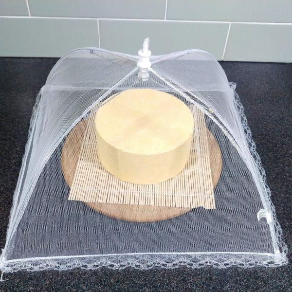 Food Cover Umbrella